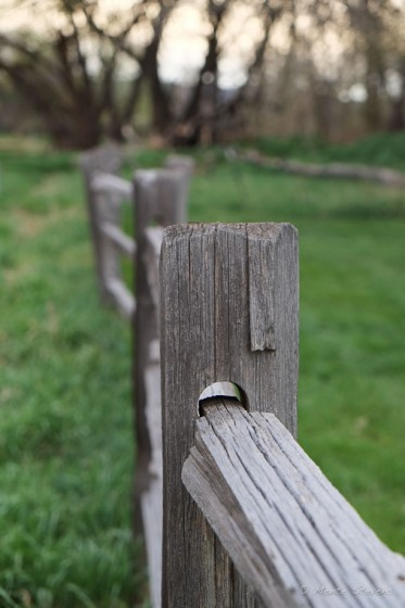 Fence at Rowland Moore Park