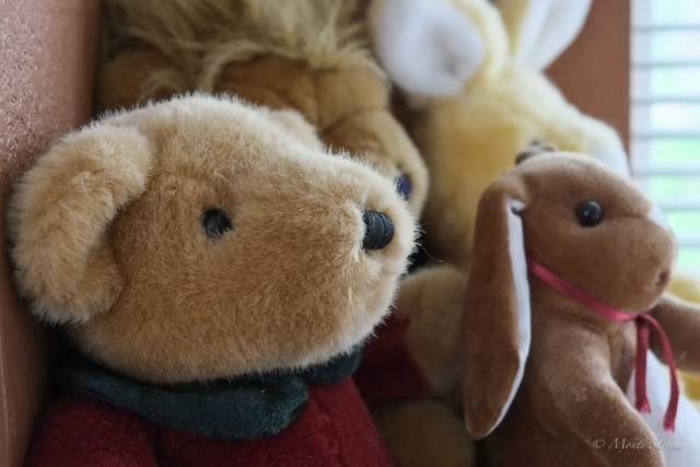 Stuffed Animals: Gifts from special people