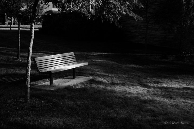 A Bench with Light