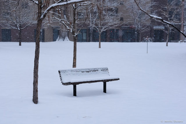 An Empty Bench