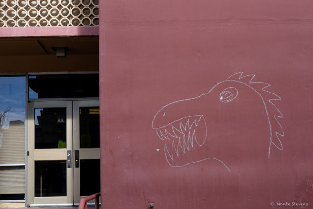 Dragons at the Behavioral Science Building